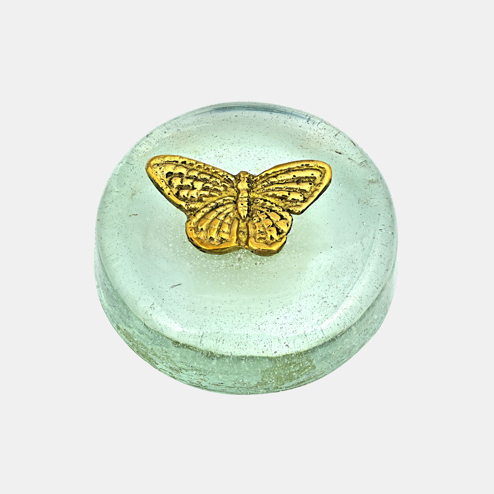 Butterfly - Paper weight